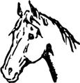 horse head right